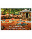 DALLAS ARBORETUM PUMPKIN COOKBOOK