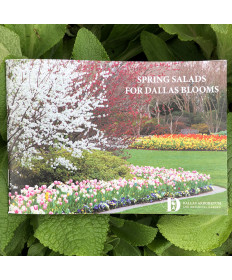 SPRING SALAD COOKBOOK